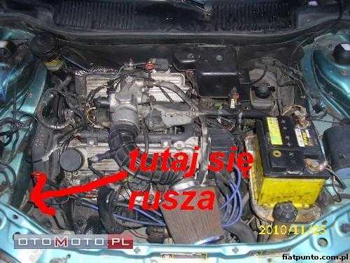 Fiat Punto Forum Zobacz Temat Poduszka Silnika